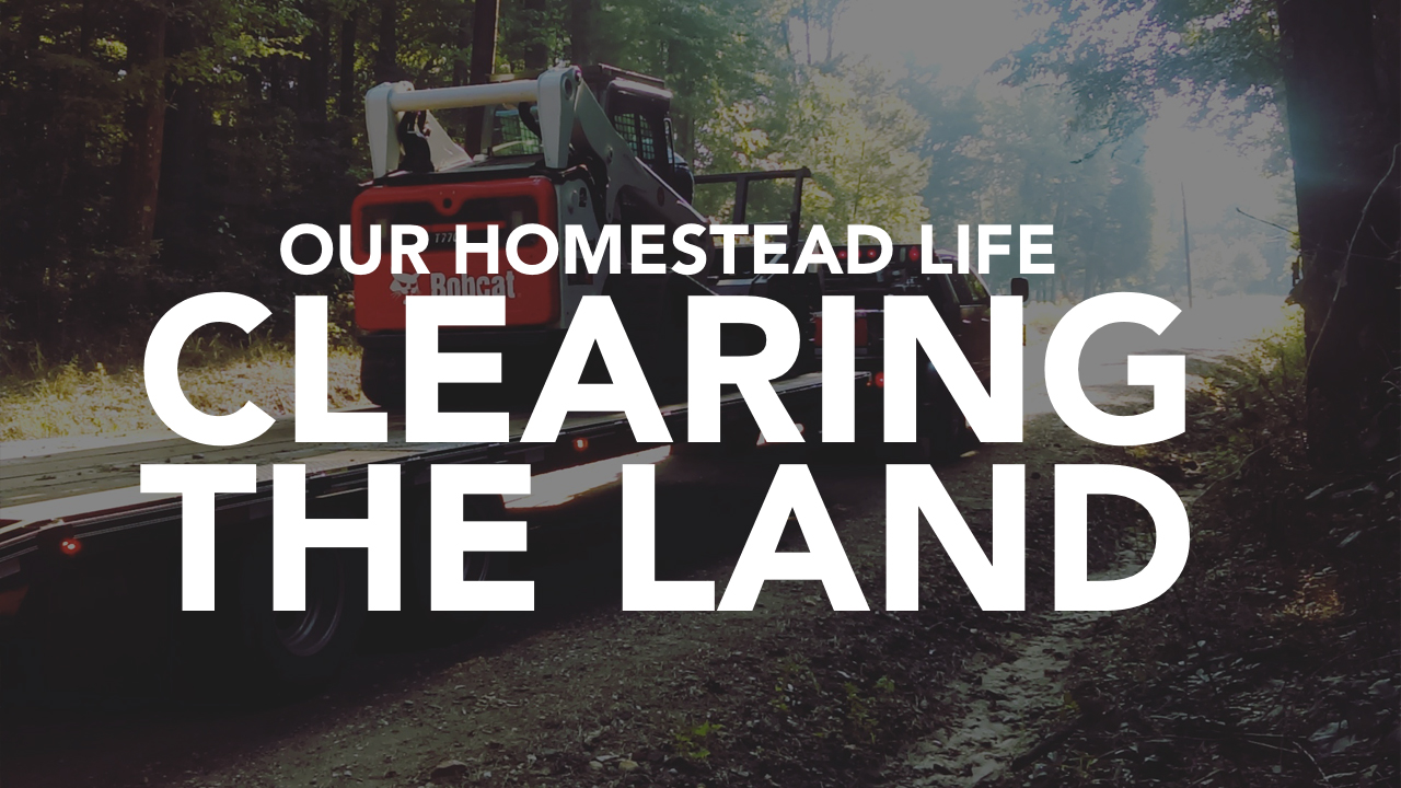 Clearing The Land: Making Way for Our Future
